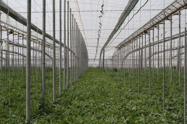 Creer y crecer en Agricultura