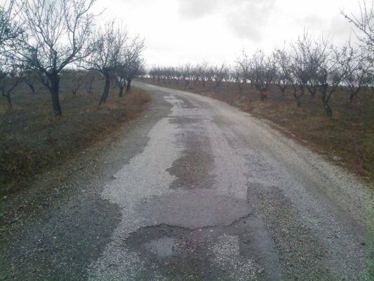 FOTO oria camino yegua baja