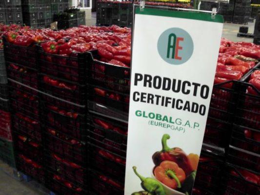 Pimientos certificados AgrupaEjido
