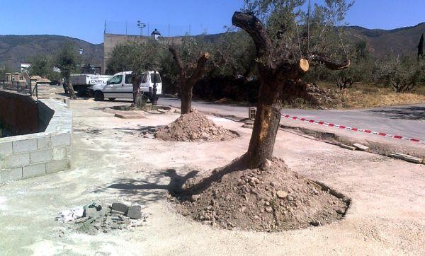 120625 Plan Turístico Alpujarra- Obras Padules