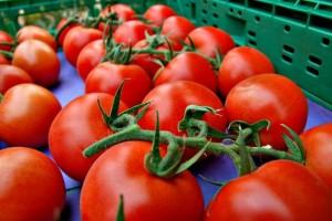 Tomates La Cañada Níjar