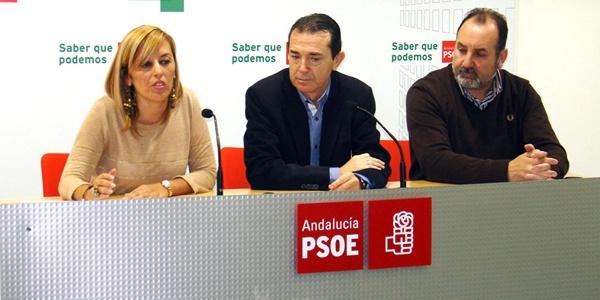 Sonia Ferrer es diputada provincial y portavoz del PSOE en Pechina