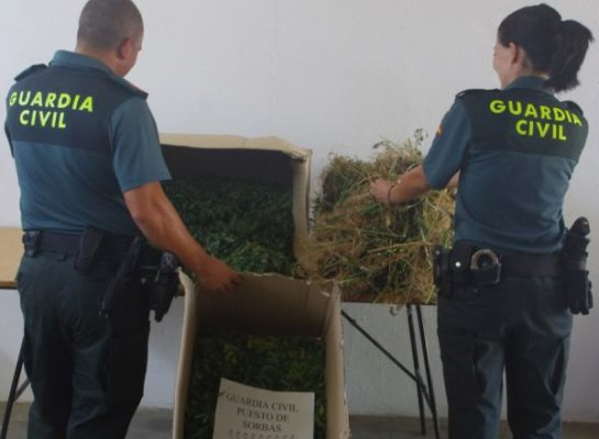 Marihuana Sorbas