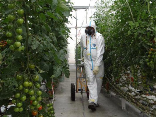 12.05.30 ESEX taller fitosanitarios aepla ALM 02pq