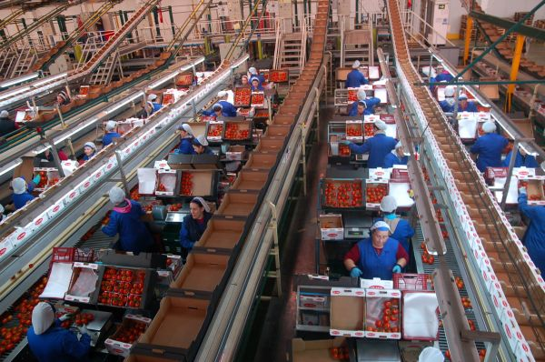 Interior de una comercializadora
