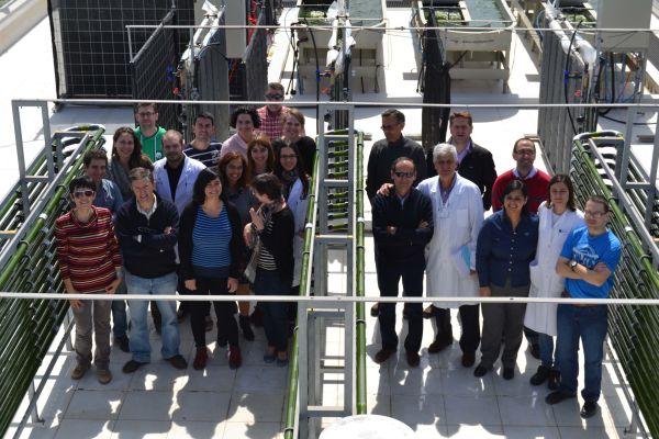 Grupo investigación microalgas UAL