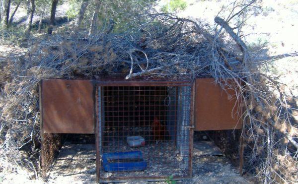 Jaula trampa sierra estancias agentes medio ambiente