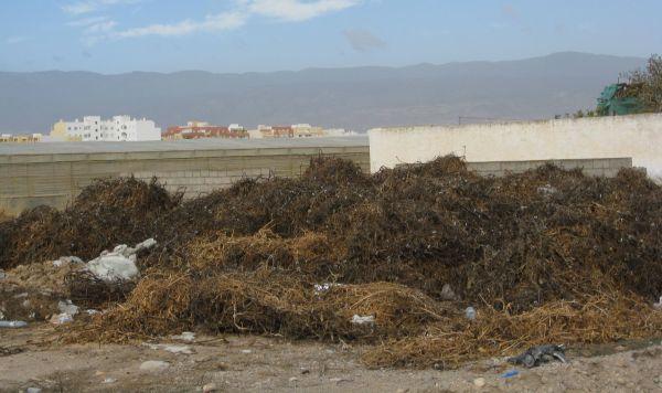 restos vegetales roquetas