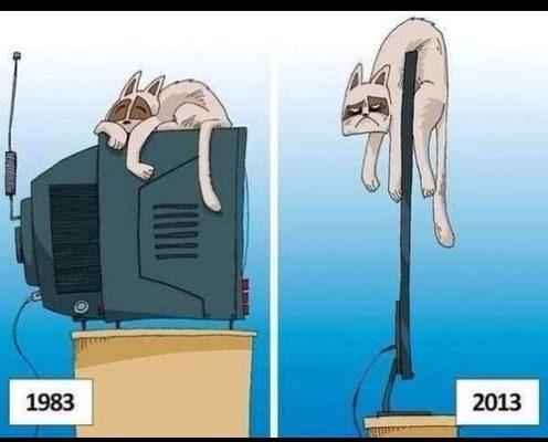 Tecnología insensible