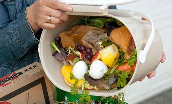 comida a la basura