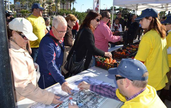 venta de cajas hortalizas solidarias