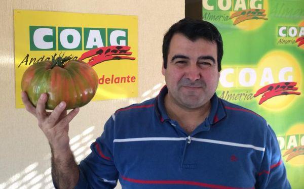 Andrés Góngora con un tomate de casi 2 kilos