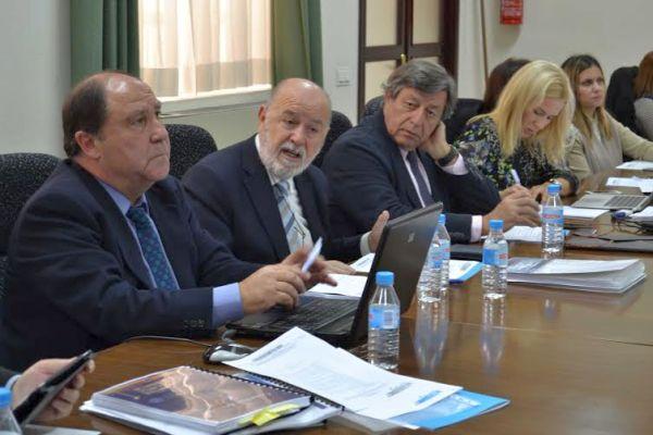 Consejo Social UAL