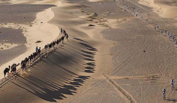 Titan Desert junto a los camellos nómadas