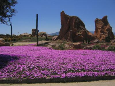 primavera-de-almeria