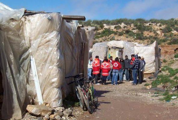 Cruz Roja inmigrantes