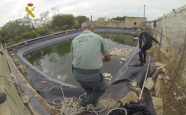 Encuentran el cadáver de un hombre de 67 años en una balsa en la Cañada