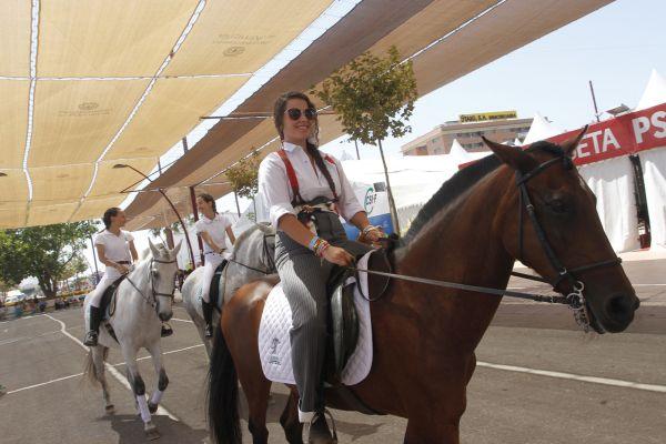 Concurso de caballos Feria de Almería