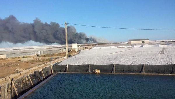 Incendio Ejido Medioambiente