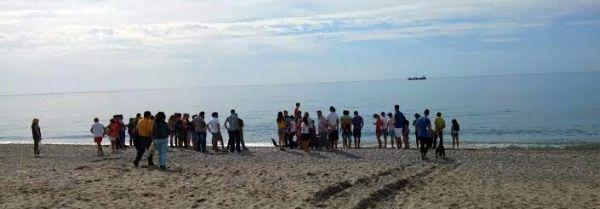 Playa de Balerma donde ha aparecido el calderón. Foto Fran Maldonado