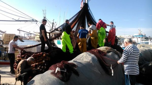 Pescadores preparan sus artes para salir a faenar