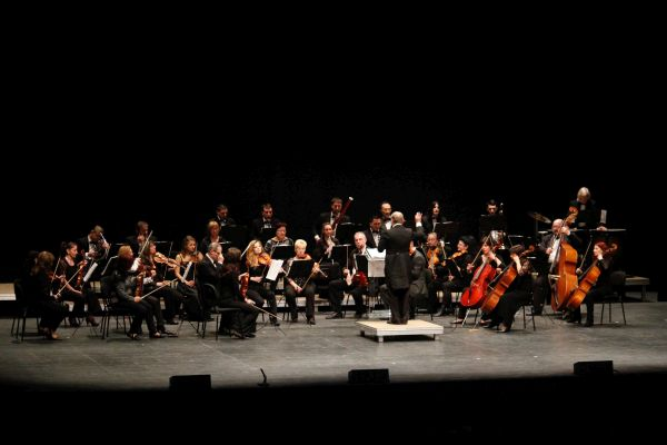 122714 concierto auditorio Strauss