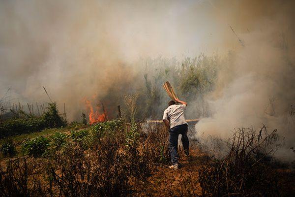 agricultor apagando incendio