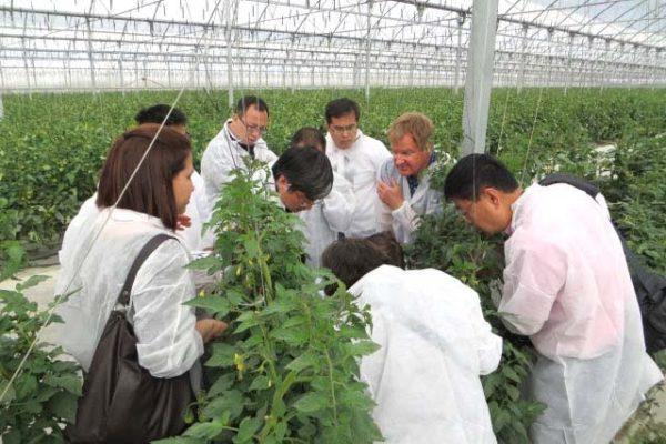 Visita-delegación-china-a-Almería