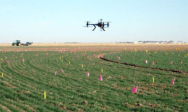 Dron en agricultura