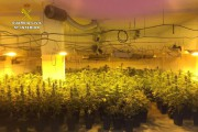 Cerca de dos mil plantas de marihuana y diez detenidos en una redada en Níjar