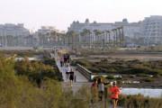 Roquetas se moviliza el domingo para proteger las Salinas de San Rafael de las urbanizadoras