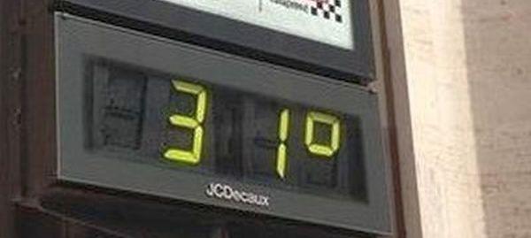 31-grados
