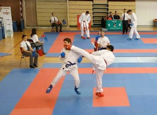 campeonato-andalucia-karate