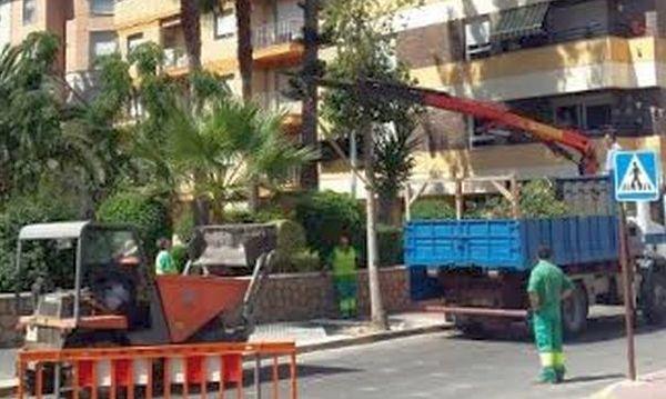 Arboles-Adra (1)