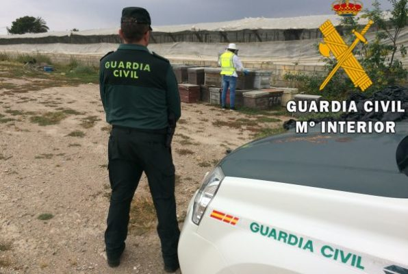 colmenas Guardia Civil