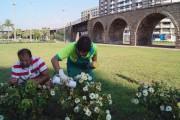 Almería aplica control biológico en parques y jardines de la ciudad para combatir plagas