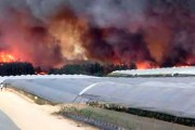 Indignación con quienes relacionan la agricultura con el incendio de Doñana