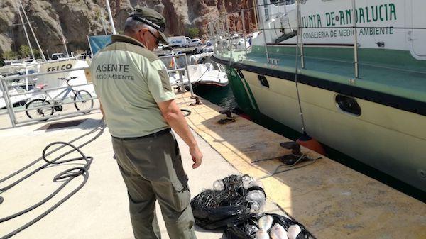 Decomiso Pesca