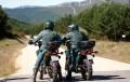 El Seprona vigilará los viveros ilegales de Almería ante un segundo caso de Xylella en Alicante