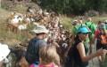 Cerca de un centenar de senderistas coronan la 'Ruta del Collao'