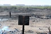No solo se queman árboles