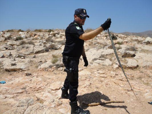 El reptil fue librado en la Sierra de Gádor, su hábitat natural