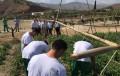 La agricultura, una vía de reinserción para los menores del Centro de Internamiento de Purchena