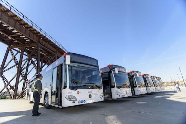 buses Surbus