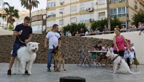 concurso canino-al mas grande Titan