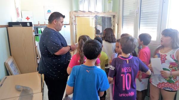 El apiscope despierta expectación entre los escolares