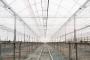 El almacén de Grupo Cristalplant: la transparencia y la calidad hechas tradición