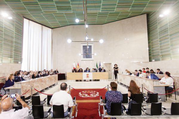 Salon de plenos almeria