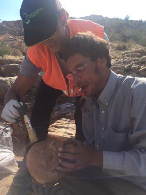 Restos hallados por los arqueólogos