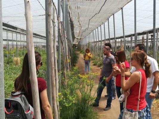 Jóvenes agricultores reciben formación en producción ecológica en Almería